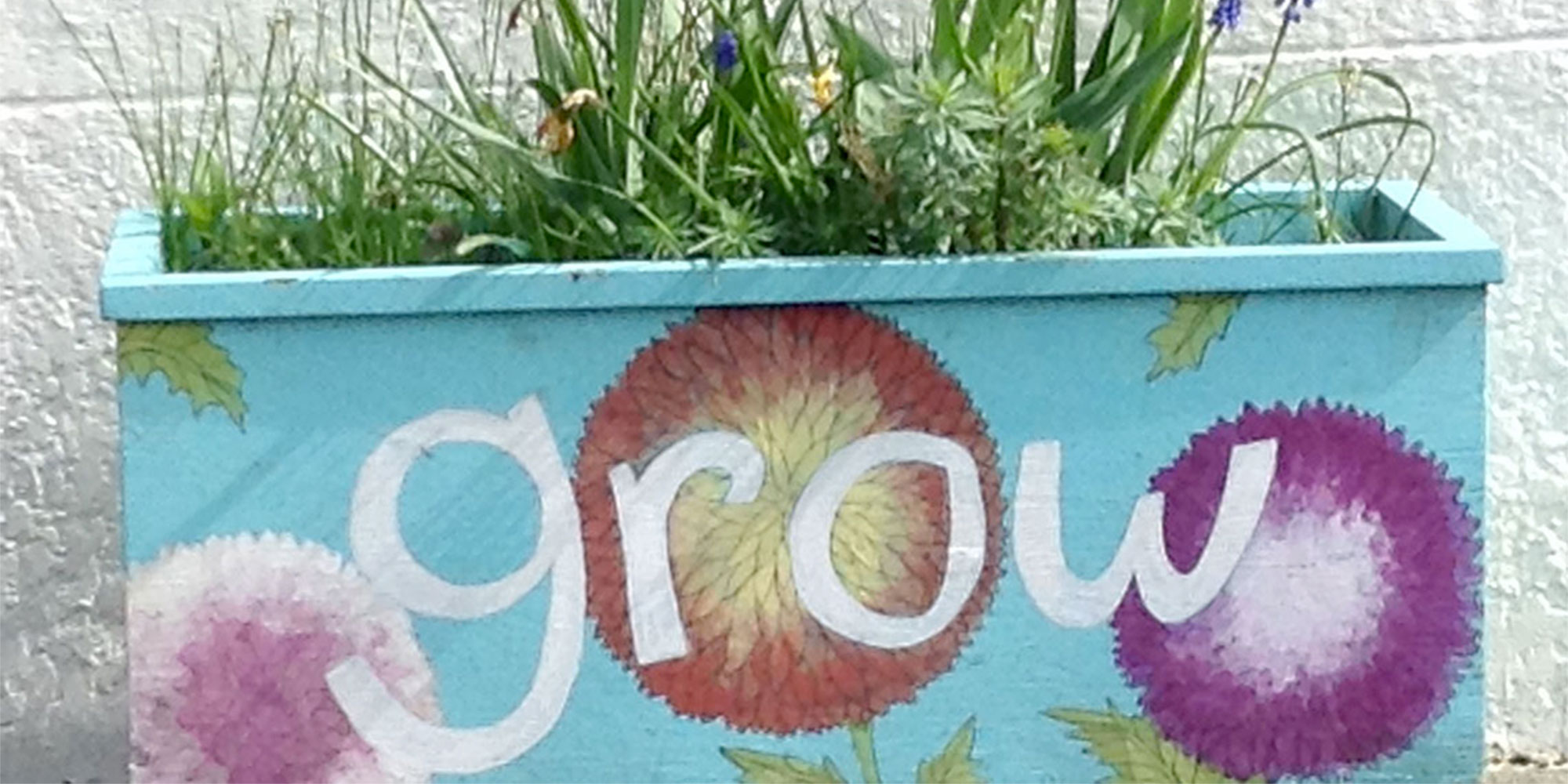 No Matter What, Keep Growing